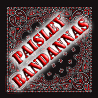 Traditional Paisley Bandannas