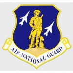 "U.S. Air National Guard Decal - 4"" - ""A.N.G."" Ins"