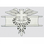 "U.S. Army Decal - 2.7"" x 4"" - Expert Medical Badge"