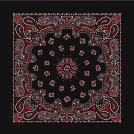 Black / Red Paisley Print Bandana