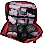 The Master Camping First Aid Bag: 230 Items